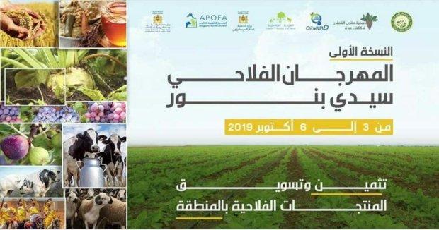 230 عارضا يشاركون في المعرض المهني لتربية الماشية بسيدي بنور