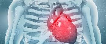 """""""فلتتحرك … لحماية قلبك"""" دعوة من المجتمع المدني بالدار البيضاء لتخطي أعراض فشل القلب ومضاعفاته"""