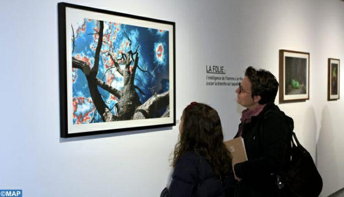 معرض فني يدعو للرفع من مستوى الوعي البيئي
