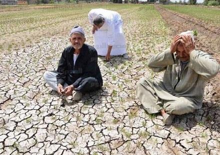 معاناة صغار الفلاحين بين جائحة كورونا و كارثة الجفاف