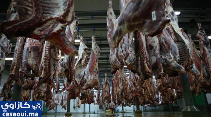 مجازر البيضاء تنتج 45 ألف طن من اللحوم سنويا