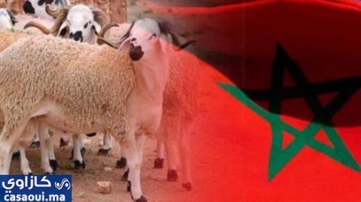 رسميا.. الأربعاء 21 يوليوز أول أيام عيد الأضحى بالمغرب